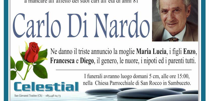 Carlo Di Nardo